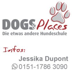 Dogs and Places – Die Hundeschule in Lahr