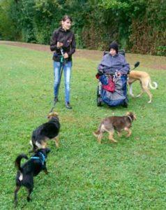 Therapeutische-Arbeit-bei-der-Hundeschule-Lahr-Jessika-Dupont